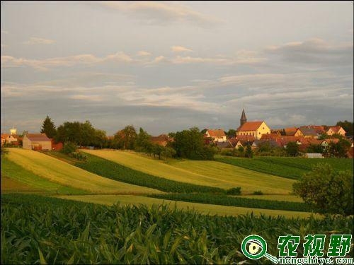 法国农村梦幻中的田园生活风景图片 - 国外图片 - 网